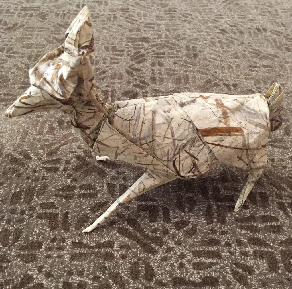 DeerPaces